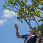 Cofructo: buenas prácticas agrícolas para la producción responsable