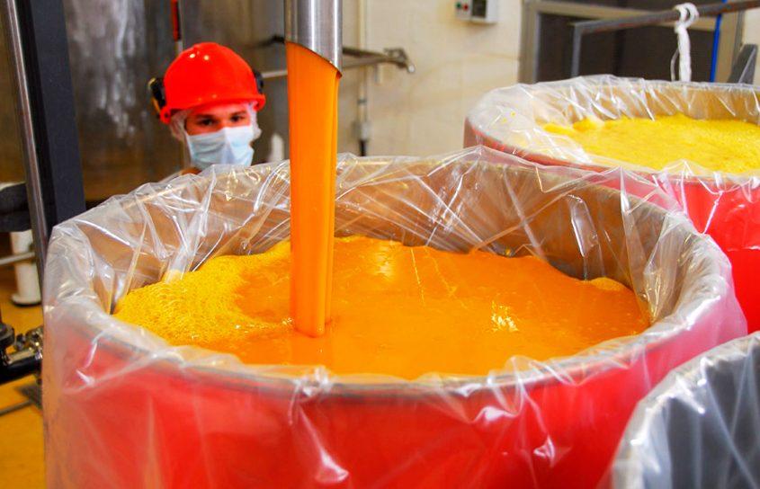 manejo agronómico del cultivo de cítricos